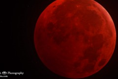 Photo of the Moon during total lunar eclipse