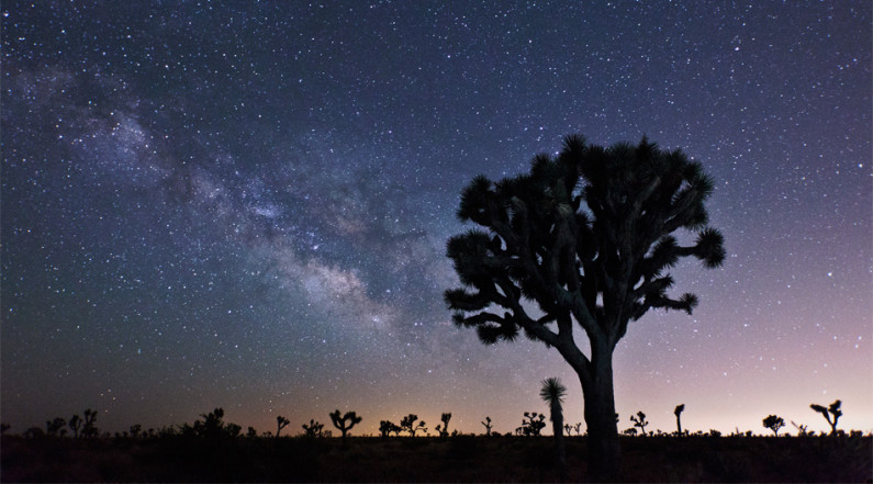 Galactic Core of the Milky Way in Joshua Tree